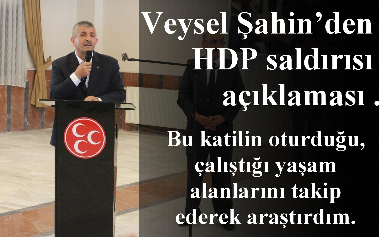 MHP'li Şahin'den 'HDP saldırısı' açıklaması